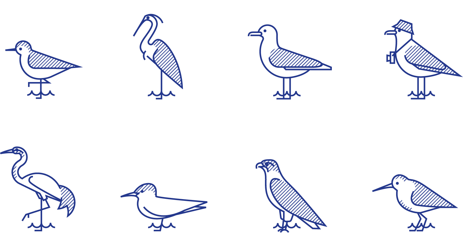 hjejle_all_birds